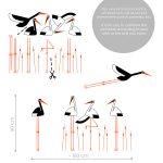 berze-in-papura-autoloant-decorativ-de-perete-storks-with-vegetation-wall-sticker-dimensions